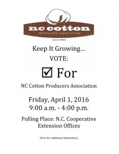 Cotton Referendum Brochure