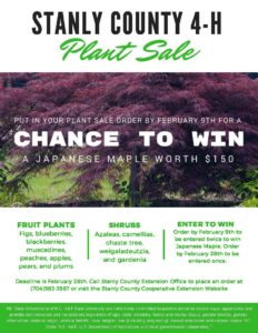 Cover photo for 4-H Plant Sale 2018...Win a $150 Japanese Maple!