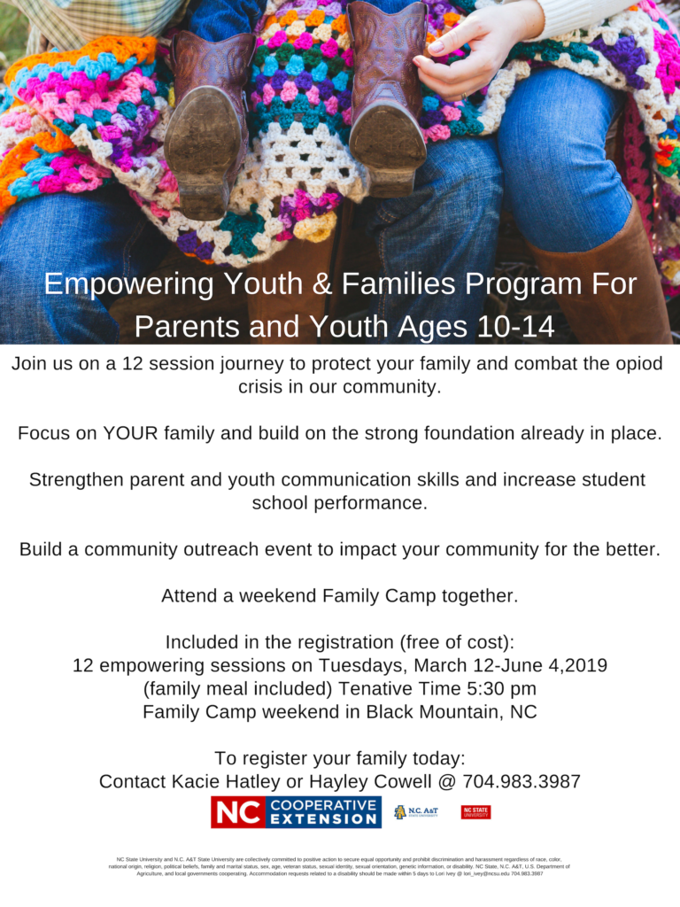 Empowering Youth & Families Program flyer